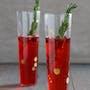 Cranberry-Prosecco Fizz